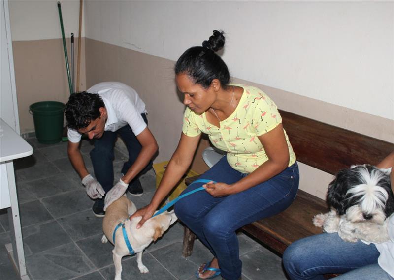 Equipe da Vigilância Sanitária fez vacinação de cães e gatos no box da Feira